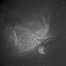 M42 Halpha,                                Adriano Valvasori