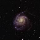 Pinwheel Galaxy (M101),                                Idahoman