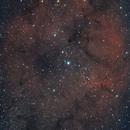 """Largo campo sulla """"Nebulosa Proboscide"""",                                Fabio Di Stefano"""