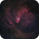 Cone Nebula with Christmas Tree Cluster and Surroundings Mosaic West+East (Theli v2 NOMAD L=Red,RGB),                                Martin Junius