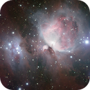 Great Orion Nebula,                                Roger Groom