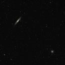 NGC 253 and NGC 288,                                Marcelo Domingues