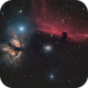 Horsehead in visible light,                                OrionRider