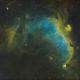 Seagull Nebula Wide Field In SHO,                                mikefulb