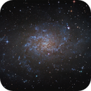 M33,                                mrezzonico