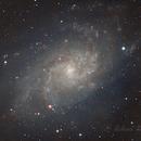 NGC 598 Triangulum Galaxy,                                Richard H