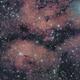 The Butterfly nebula,                                MFarq