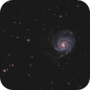 M101 Galaxy - Fine structures from light polluted skies,                                Victor Van Puyenbroeck