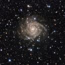 IC342,                                Laszlo Kis