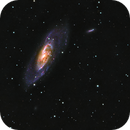 M106 and sisters,                                Emanuele Bergamaschi