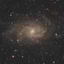 M33 Triangulum Galaxy,                                Ryan Betts