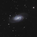 NGC2903 ,                                Mike Carroll