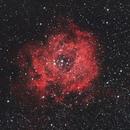 NGC 2237 Rosette nebula From City Center,                                Paolo Zampolini