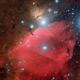 Orion belt, Horse head and flame nebula,                                Amir H. Abolfath