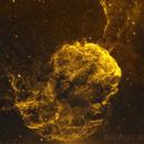 IC443 / Sh2-248 - Jellyfish Nebula (HOO Bicolour Combination),                                William Tan
