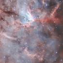 NGC 1491 - Fossil Footprint Nebula - Sh2-206 - LBN 704/705 (crop),                                pete_xl