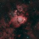 Fish head nebula,                                Bernard DELATTRE