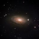 M63 Sunflower Galaxy,                                KimKiDae