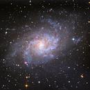 Triangulum Galaxy M33,                                Todd