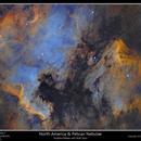 North America & Pelican Nebulae,                                rflinn68
