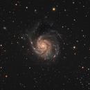 M101 (The Pinwheel Galaxy),                                rupeshvarghese