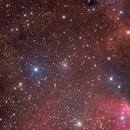 vdB153, Sh2-140, LDN 1204, LBN 505; Cepheus,                                Thomas V. Davis