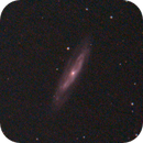 M98 & M99 (19 Mar 2020) - EAA,                                Bernhard Suntinger