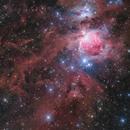 Orion Nebula and neighborhood,                                Toshiya Arai