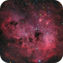 IC 410 (RGB with HSO enhancement),                                Miles Zhou
