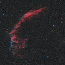 NGC6992,                                Michael Schulze