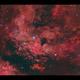 IC1318 Nebulosity around Sadr in Cygnus HaRGB,                                Göran Nilsson
