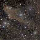 LDN 1235, Dark Shark nebula,                                Amir H. Abolfath