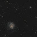 M101/NGC 5457/Pinwheel-Galaxie & NGC 5474,                                Falk Schiel
