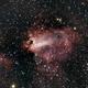 Omega Nebula,                                CarlosAraya