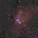 NGC2264 and co,                                ZlochTeamAstro