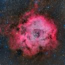 Rosette Nebula (NGC 2244) - LHaRGB,                                Marco Favro