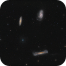 Leo Triplet - M65 / M66 / NGC3628,                                Elvie1