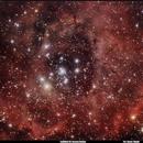 Caldwell 49: Rosetta Nebula,                                Alexis Tibaldi