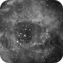 NGC2237,                                Mattia Brunetta