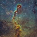 IC1396: The Elephant Trunk SHO with RGB stars,                                Glenn Diekmann