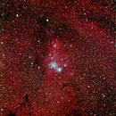 NGC 2264 Christmas Tree Cluster,                                Joachim
