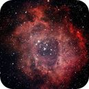Rosette Nebula,                                HaSeSky