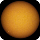 White light image of our Sun,                                RonAdams