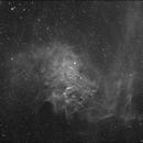 Flaming Star,                                MarcoM