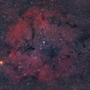 IC 1396,                                jolind