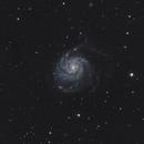 Pinwheel Galaxy (M101),                                Marco Rapino