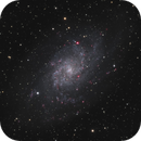 M33 (Triangulum Galaxy),                                Joel Shepherd