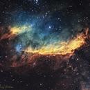 The Prawn Nebula - Hubble Palette,                                Terry Robison