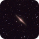 NGC 2683,                                Kurt Zeppetello