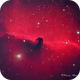 Horsehead Nebula in Orion,                                Francois Theriault